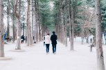 Nami Island - Romantic couple