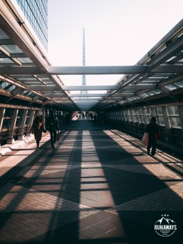 Odaiba Station